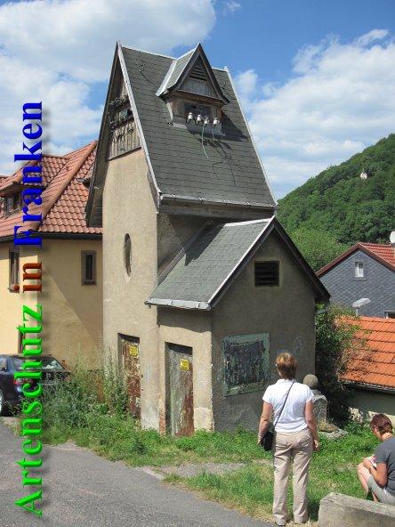 Bild zum Eintrag (43069-160)