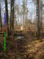 Bild zum Eintrag (1004541-177)