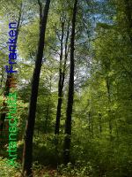 Bild zum Eintrag (1005974-177)