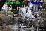 Bild zum Eintrag (910517-177)