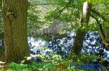 Bild zum Eintrag (912123-177)