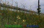 Bild zum Eintrag (912660-177)