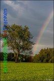 Bild zum Eintrag (916702-177)