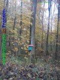 Bild zum Eintrag (917295-177)