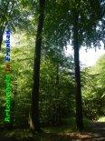 Bild zum Eintrag (919366-177)