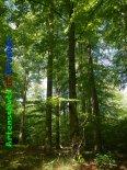 Bild zum Eintrag (919387-177)
