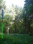 Bild zum Eintrag (919397-177)