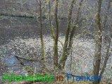 Bild zum Eintrag (920562-177)