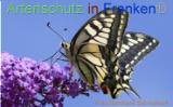 Bild zum Eintrag (921185-177)