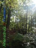Bild zum Eintrag (922129-177)